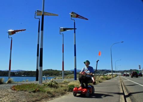 Wind sculptures, Cobham drive