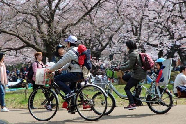 bikes, Yoyogi Park
